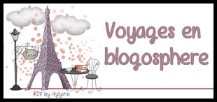logo voyages en blogosphere grand